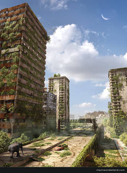 Post Apocalyptic Ruined City by stayinwonderland