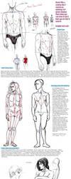 Anatomy Tutorial by Gottobestrange