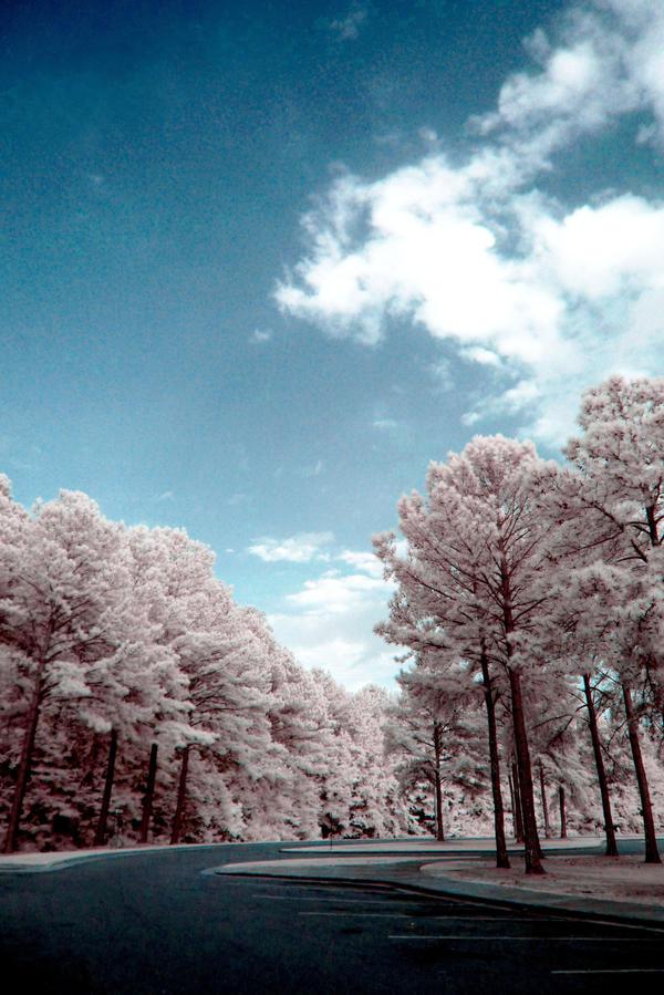 Infrared XXXV by ilimel