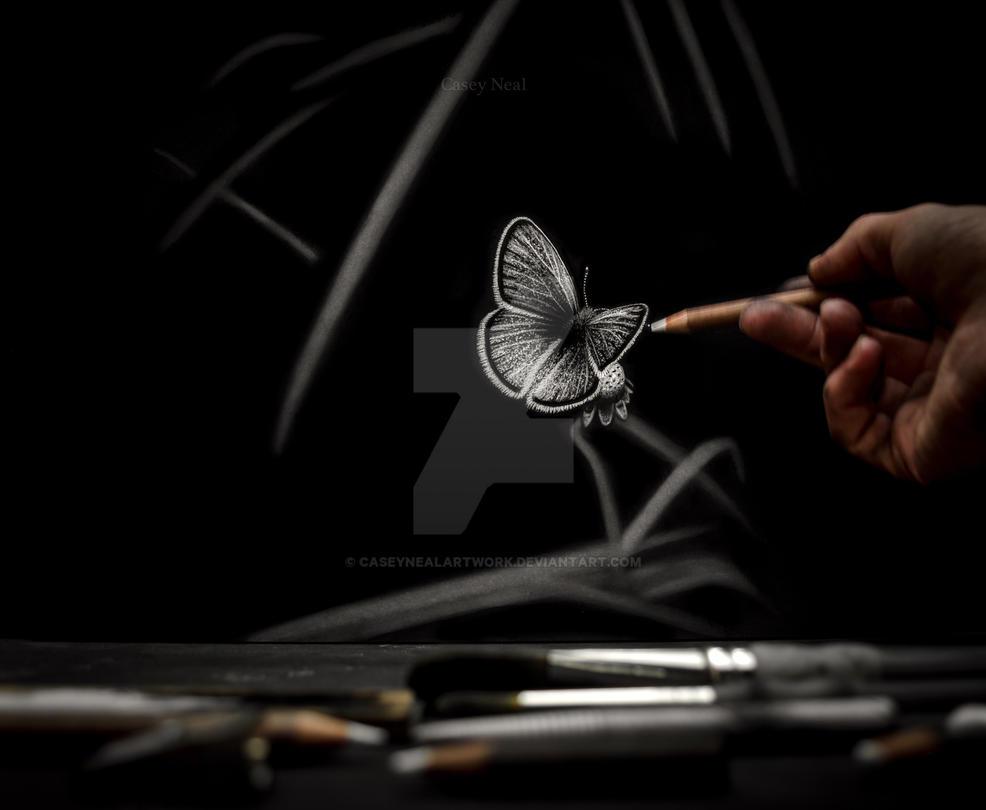 Butterfly Charcoal Drawing by CaseyNealArtwork