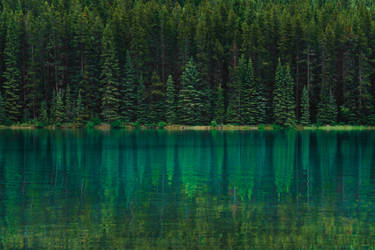 Canadian Shoreline