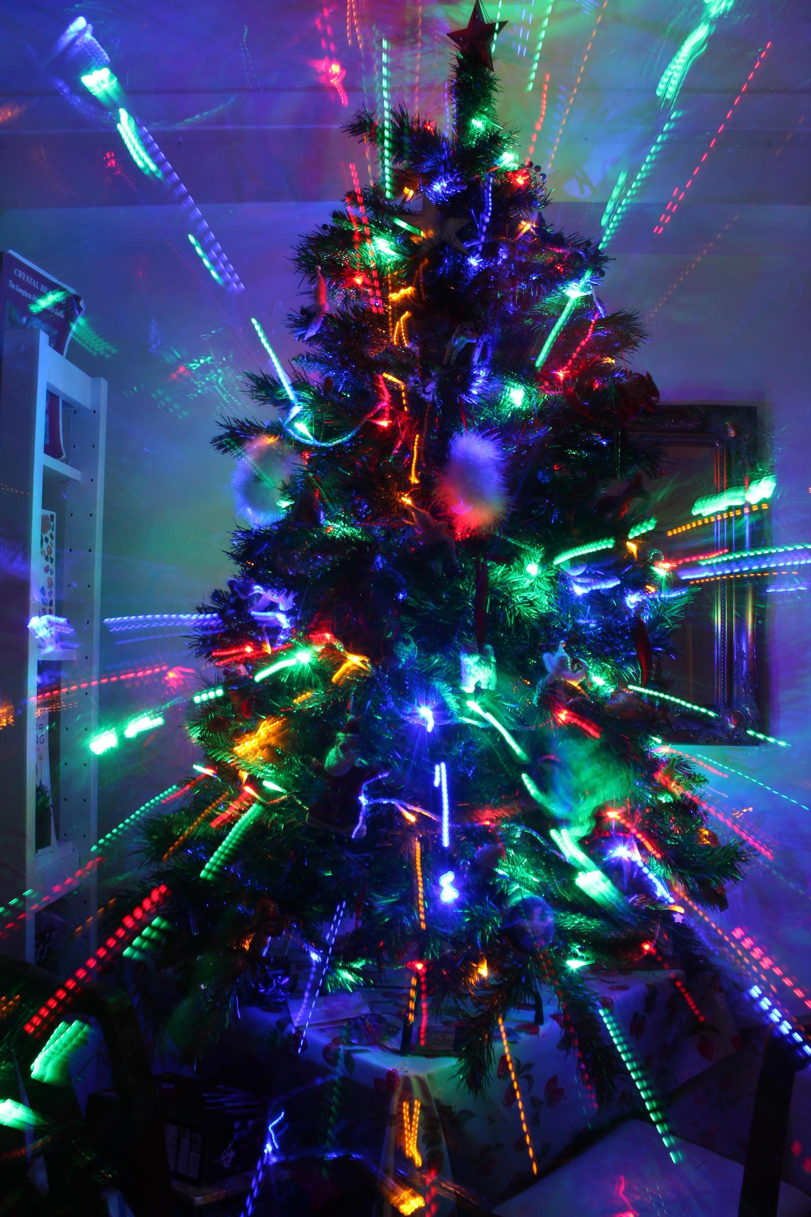 blackrainbow christmas trees - photo #29