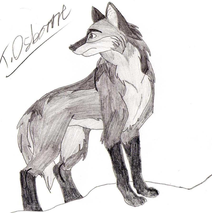anime wolf art by Ozzy-25 on DeviantArt