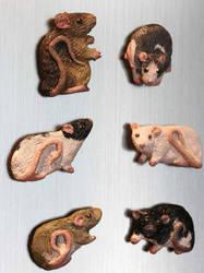 Custom Rat Magnets