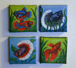 Betta Painting Magnets