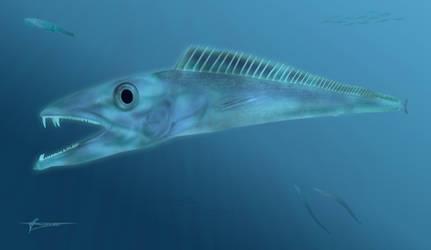 Prehistoric scabbardfish Anenchelum