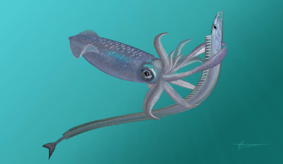 Prehistoric squid and scabbardfish Anenchelum by mixtix-freeman