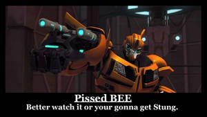 Mad Bee