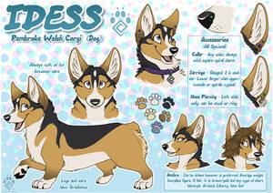 Idess Reference Sheet 2015