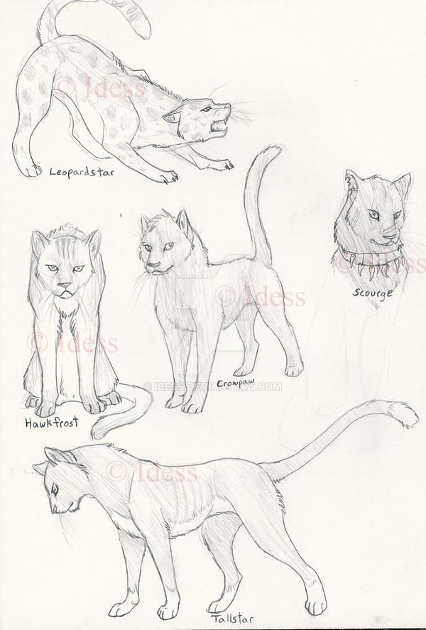 Warriors Cats by Idess on DeviantArt
