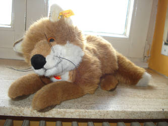 Lying Steiff young fox Snorry Plush by DreamyArcticWolf
