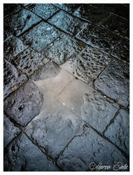 Star Puddle