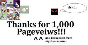 1000 pageveiws