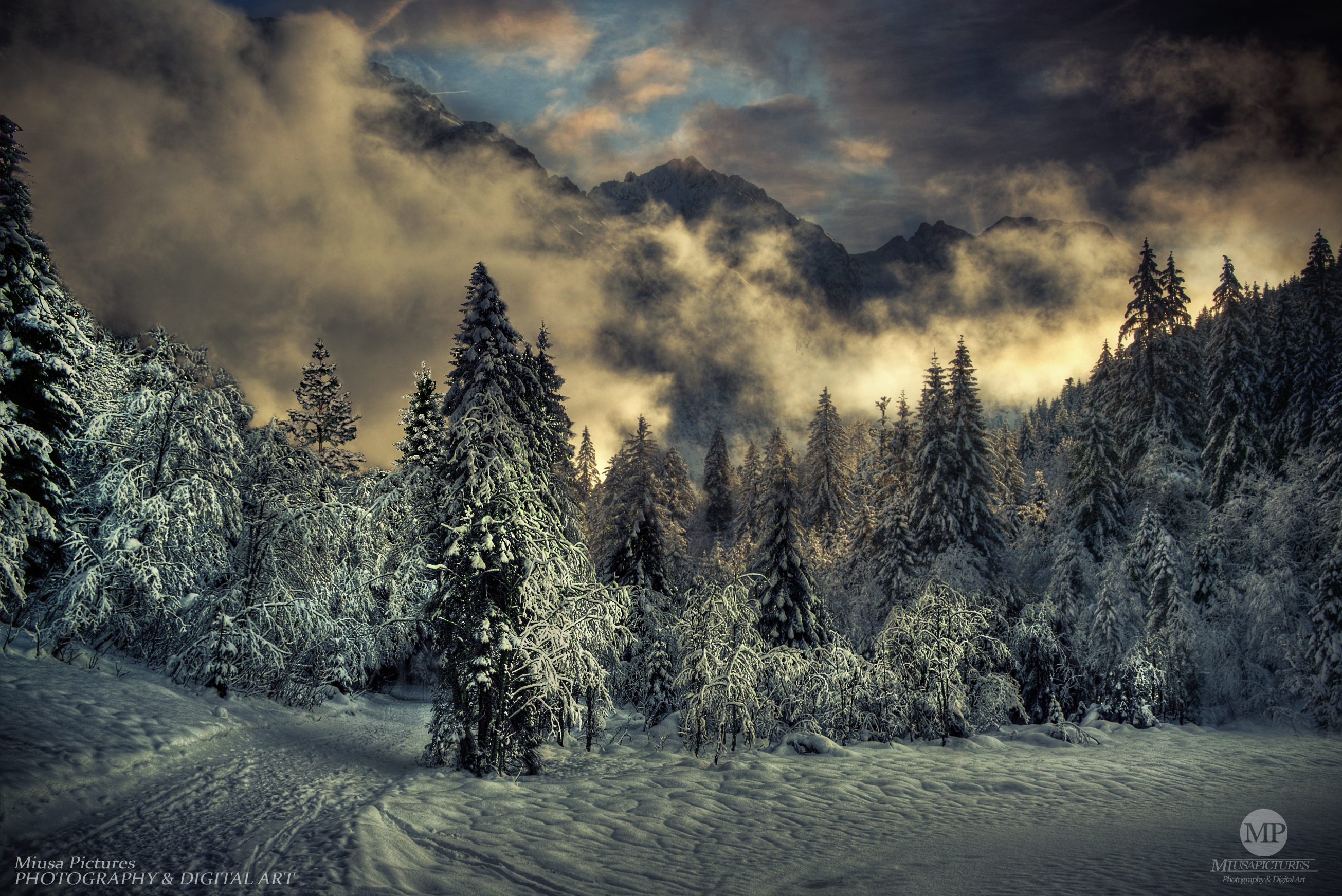 Winter Landscape by MiusaPictures