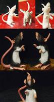 Crow the rat by EvilInstinct