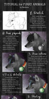 TUTORIAL: Furry animals