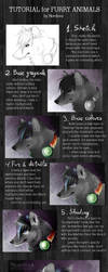 TUTORIAL: Furry animals by Nordeva
