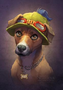 Maka - pet portrait