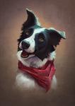 Blake - pet portrait