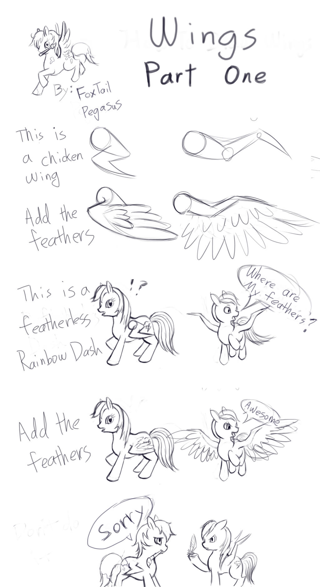 Fantastic My Little Pony Anatomy Photo - Human Anatomy Images ...