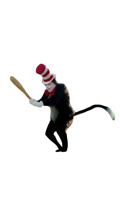 Cat In The Hat Holding The Baseball Bat