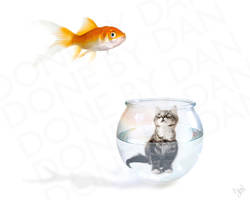 Fish Food by danfantom