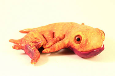 specimen smoogle