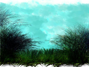 Open grass and trees