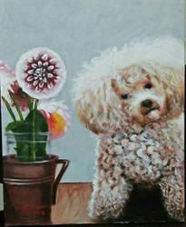 plant puppy.
