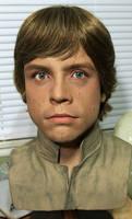NEW ESB 1/1 Luke Skywalker bust