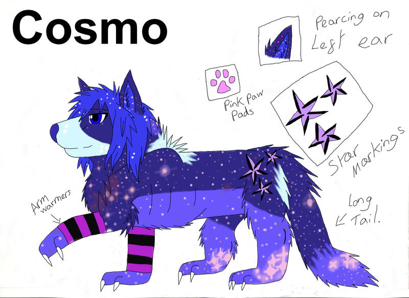 Cosmo Ref Sheet by draizor007