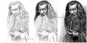 Gandalf, The Grey  - WIP by Esteljf
