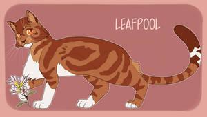 Leafpool