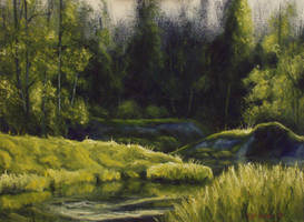 River And Trees by mp2015