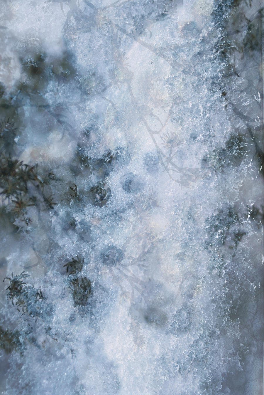 Ice and Snow Texture 1