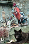 Aela the Huntress with wolf