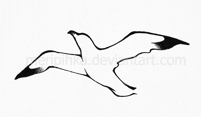 cardinal bird stencils outlines  diagrams  wiring diagram