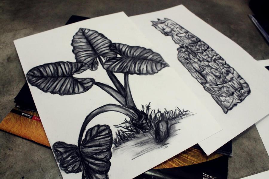 Charcoal work :) by ieramoshi2
