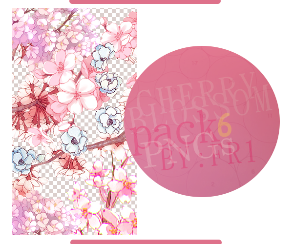 Cherry Blossom PNGs by Ameryca