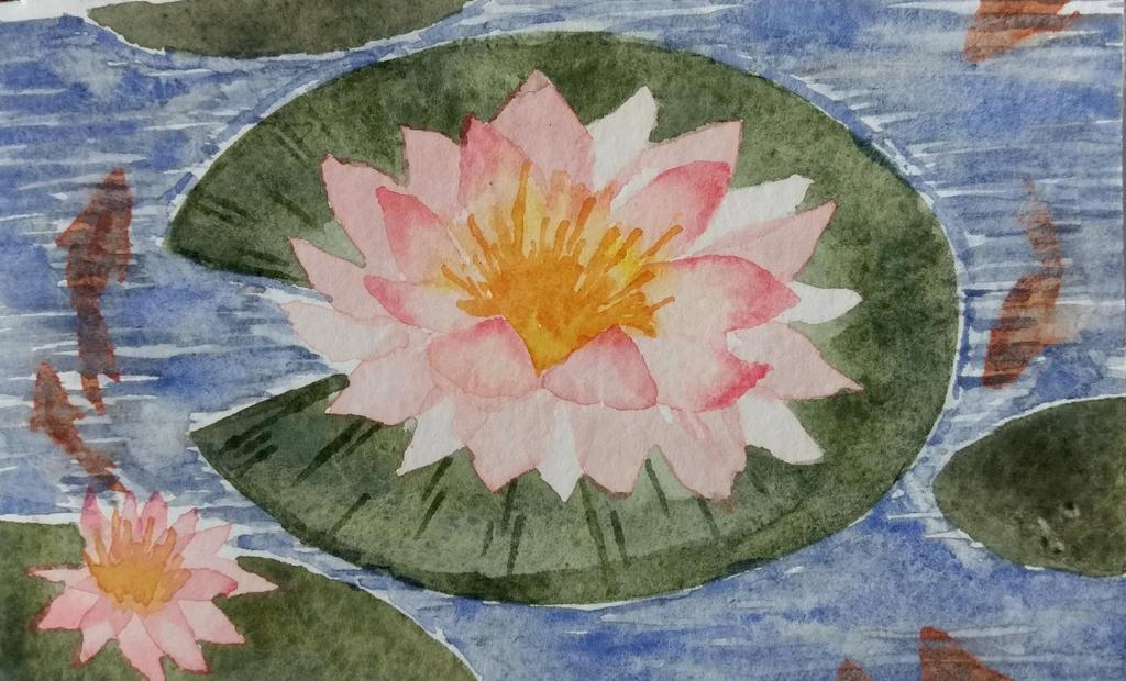 Water Lilies by breadtrain
