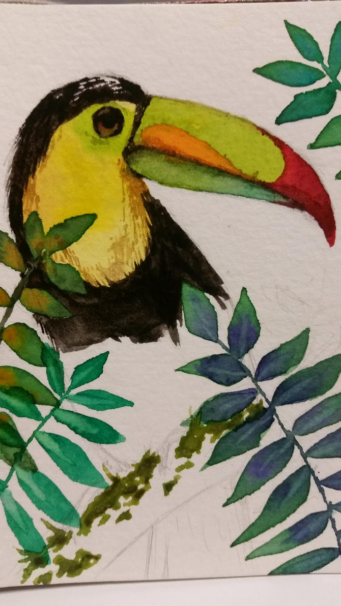 Toucan WiP by breadtrain