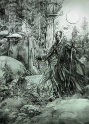 Warlock from the Deadfalls Valley