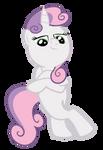 a cool pony