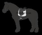 Horse Equipment: Eventer