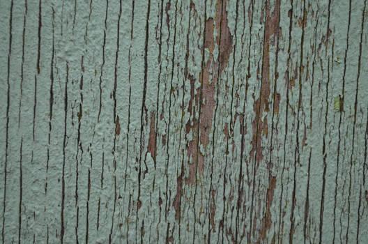 Paint on Wood I