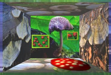 MushRoom (DA Wings project - Photo Stock - Placi1)