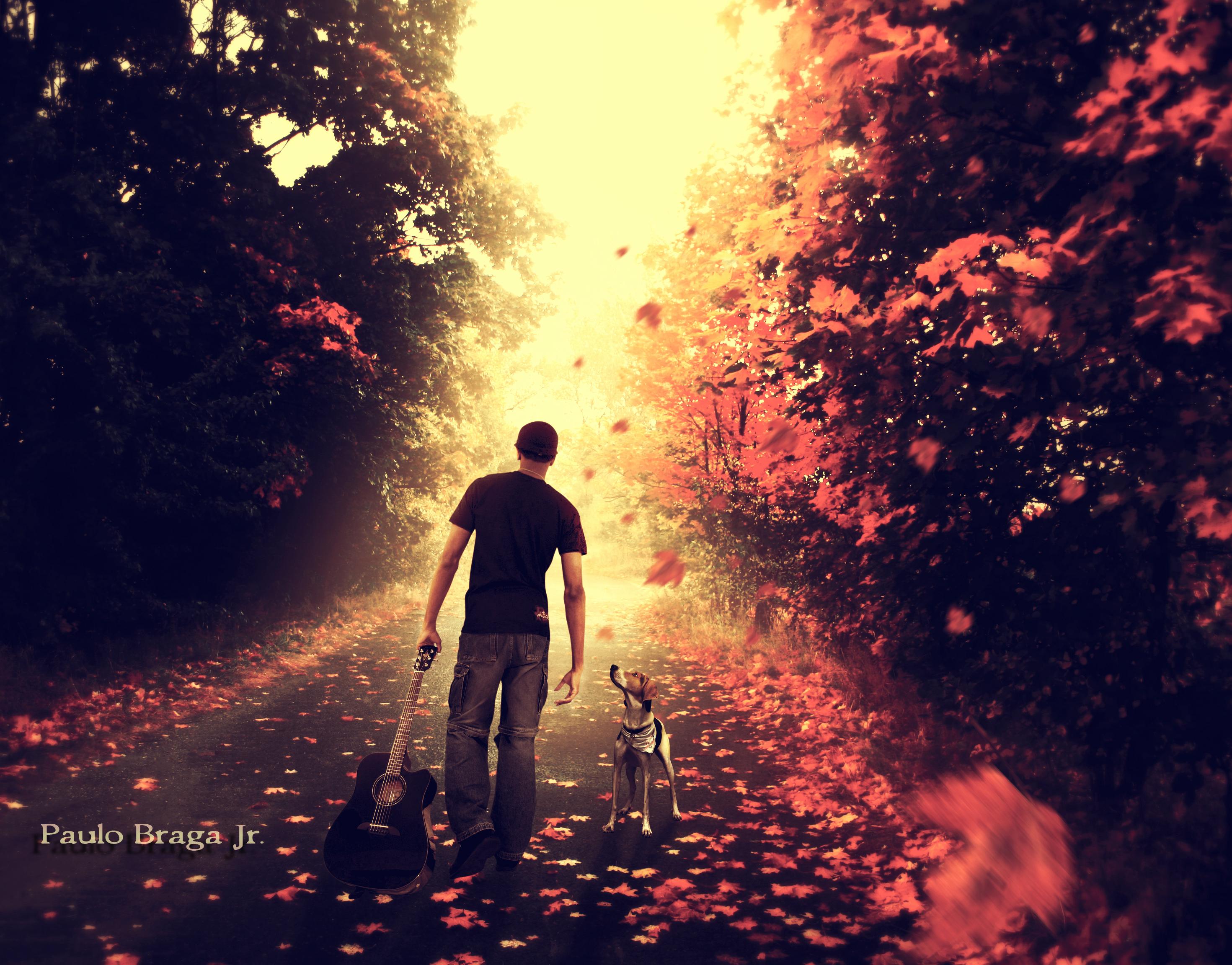 Here Comes The Sun by PauloBraga83