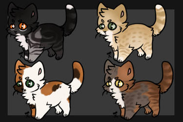 Cat Adopts (2/4 open) by becauseDia