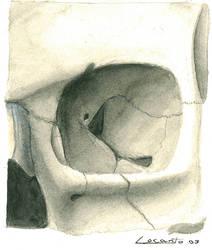 Skull eye socket - study by YouFoolWarrenIsDEAD