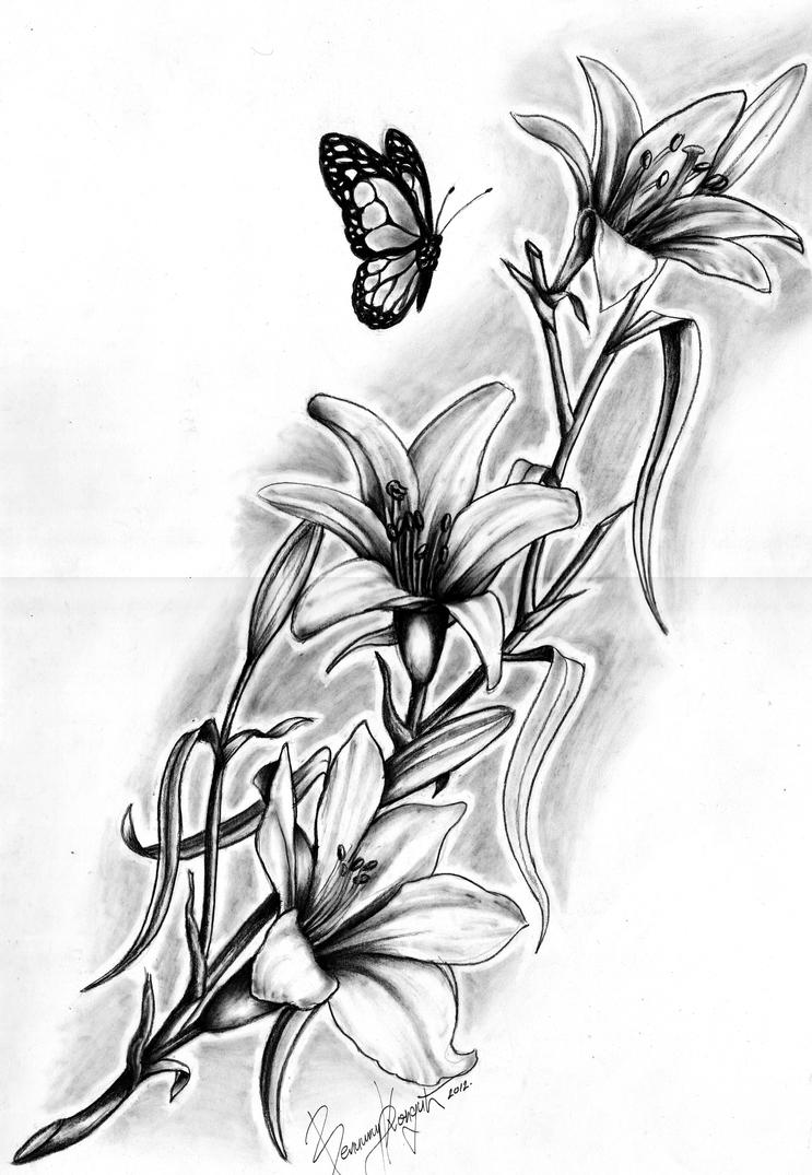 Lily Flower Drawings In Pencil Lily flowers by kondaartLily Flower Drawings In Pencil